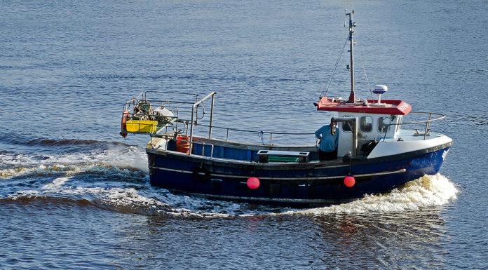 bando feamp pescatori pesca